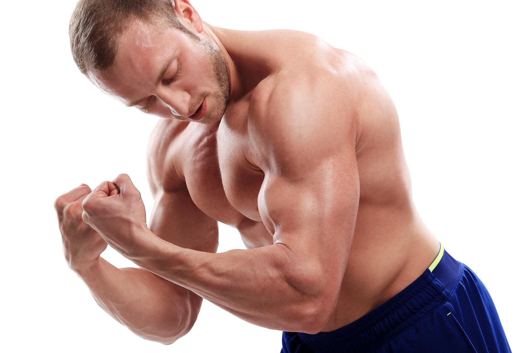 masa muscular y genética